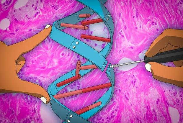 基因治疗,基因编辑,基因药物